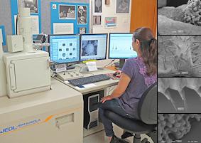 JEOL JSM-6480LA Scanning Electron Microscope